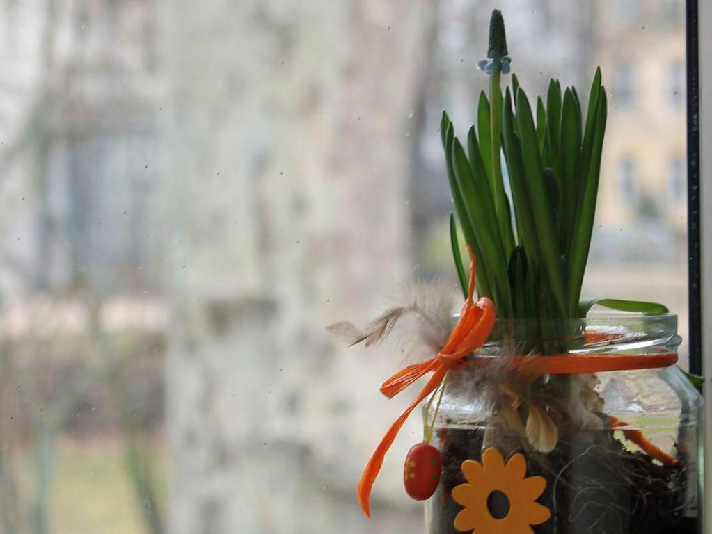 Vorbereitung auf Ostern