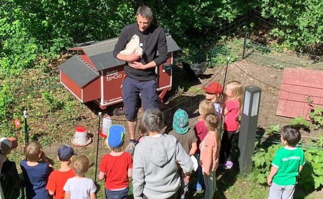 Hühner im Caritas-Hospiz Pankow